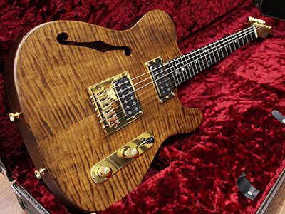 Schecter PT Custom Thinline Flame Topのサムネイル