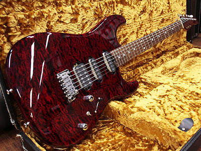 Schecter ST-4-CTM-VTR BKCHのサムネイル