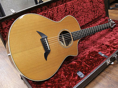 Breedlove  American Series C25/CR H with Piezoのサムネイル