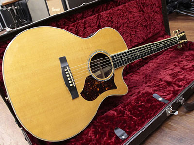 Martin Performing Artist Series GPCPA2のサムネイル